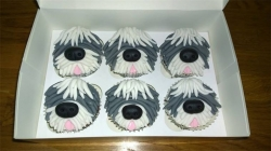 Six cupcakes decorated to look like dogs