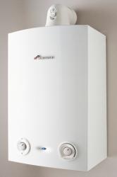 Greenstar Ri regular boilers