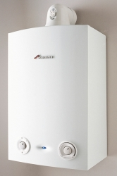 Greenstar Ri regular boilers