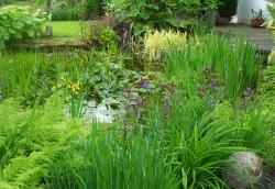 Ponds, Waterfalls, Rock Gardens & Water Features