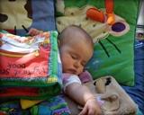 Baby asleep on blankets