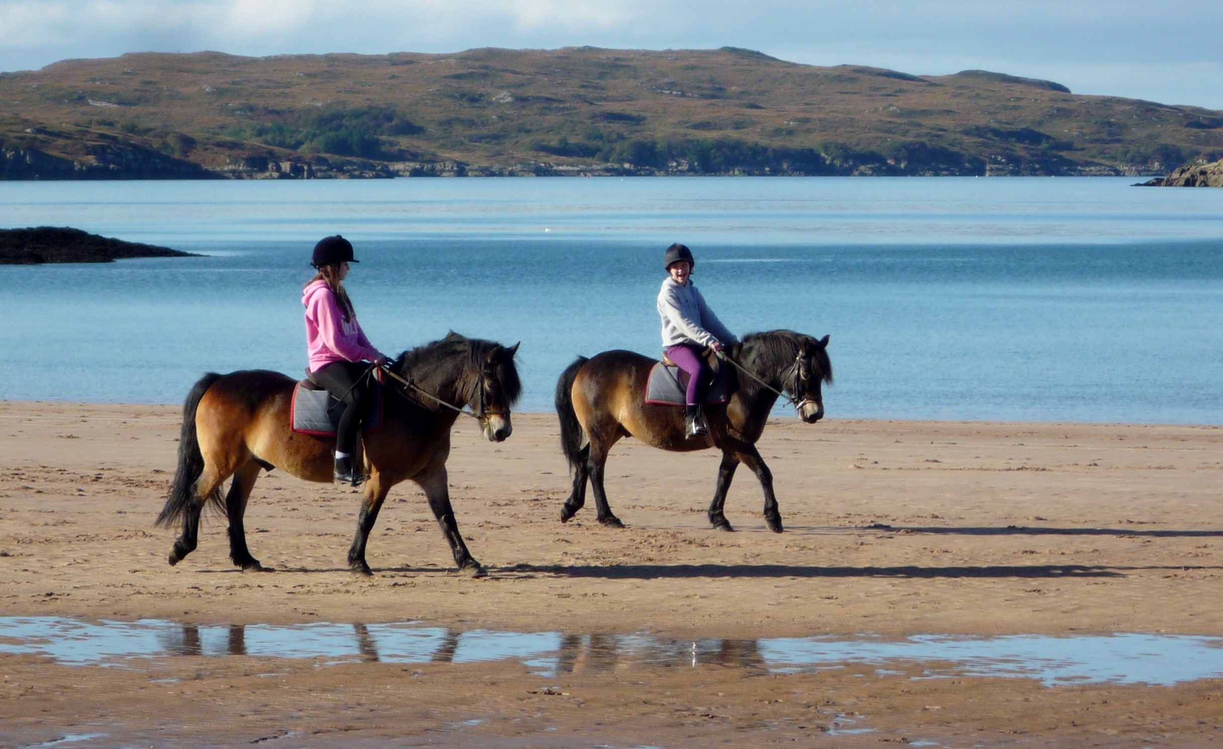 Native Pony Day dates TBC