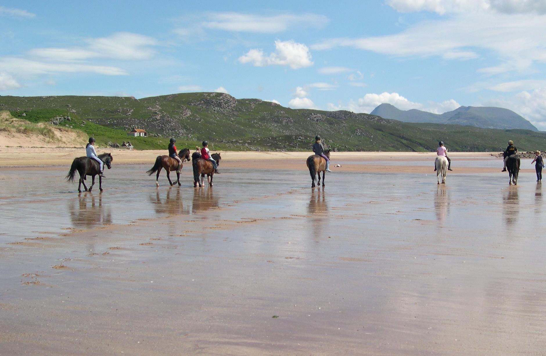 Beach Pony Games dates TBC