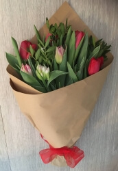 Tulip Friday Flowers Bunch