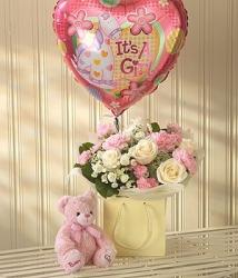 Pink Lullaby Baby Gift Set