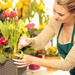 Large Florist's Choice Bouquet