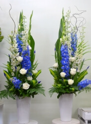 Striking blue and white Pedestals