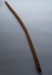 Blackthorn Wand