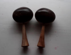 Pair of Coconut Shakers