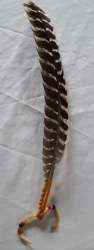Turkey Feather Smudge Fan, Sioux