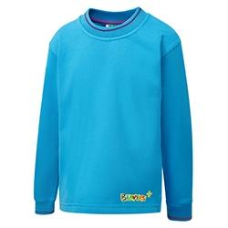 Beaver Tipped Sweatshirt