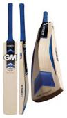GM Bat 1