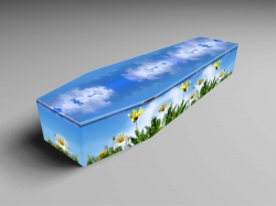 Innocence Coffin