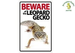 Beware of the Leopard Gecko