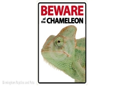 Beware of the Chameleon