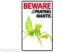 Beware of the Praying Mantis