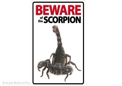 Beware of the Scorpion