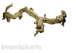Lucky Reptile Sandblasted Grapevine
