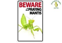 Beware of the Praying Mantis