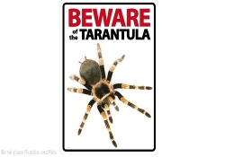 Beware of the Tarantula