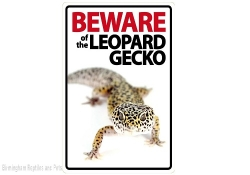 Beware of the Leopard Gecko