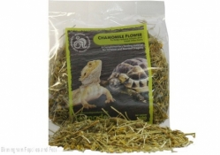 Komodo Chamomile Bearded Dragon Food
