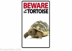 Beware of the Tortoise