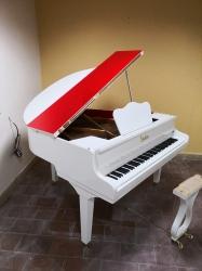 Sauter Grand Piano