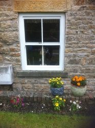 Sash Timber Window Restoration