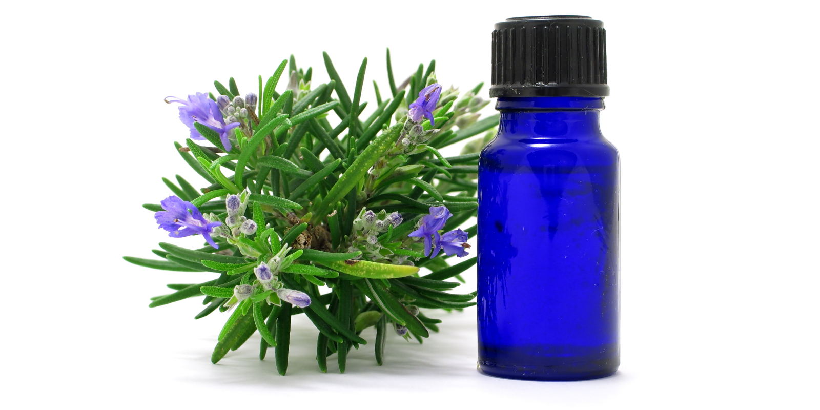 Aromatherapy & Herbal