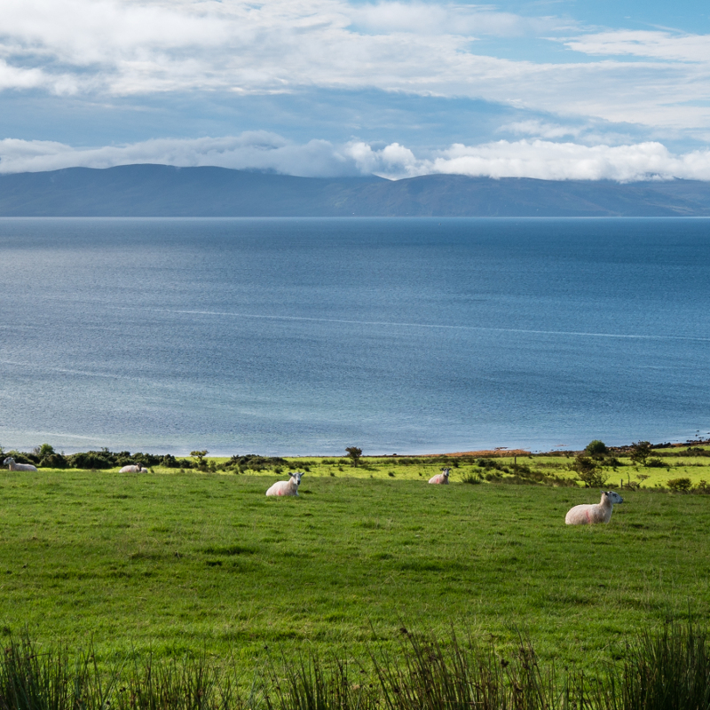 What's to do on Arran