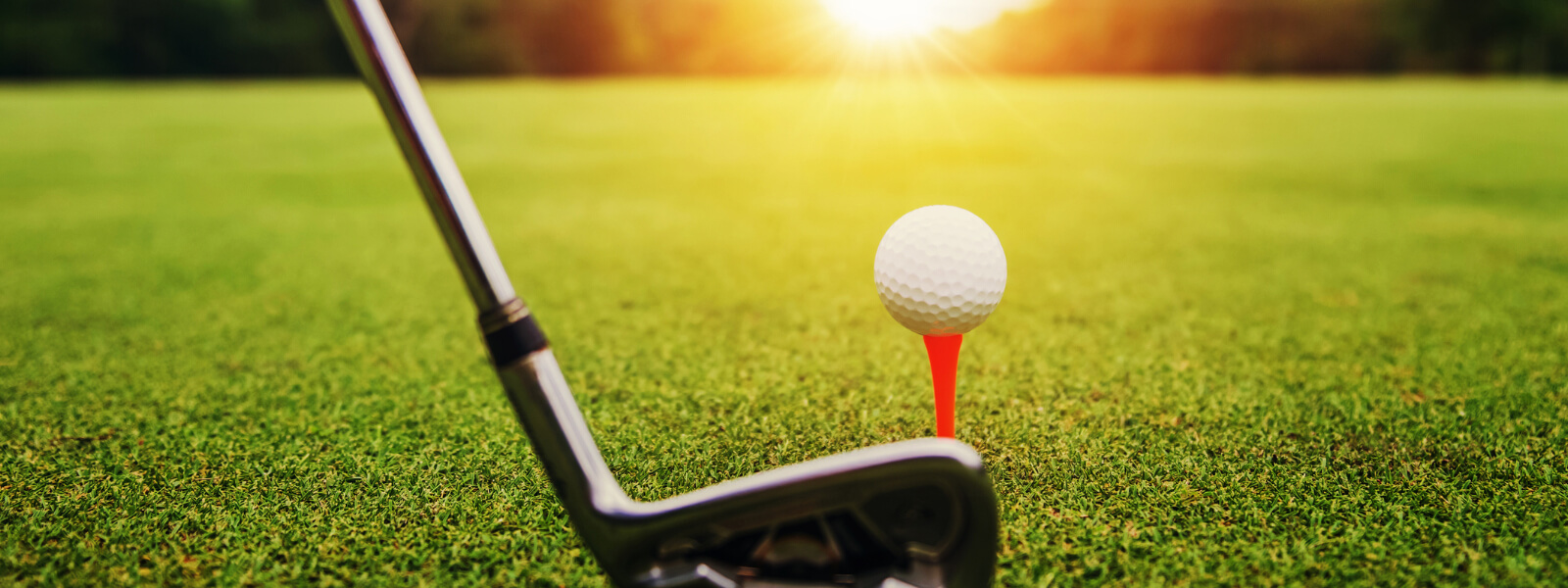 PGA Golf Coaching