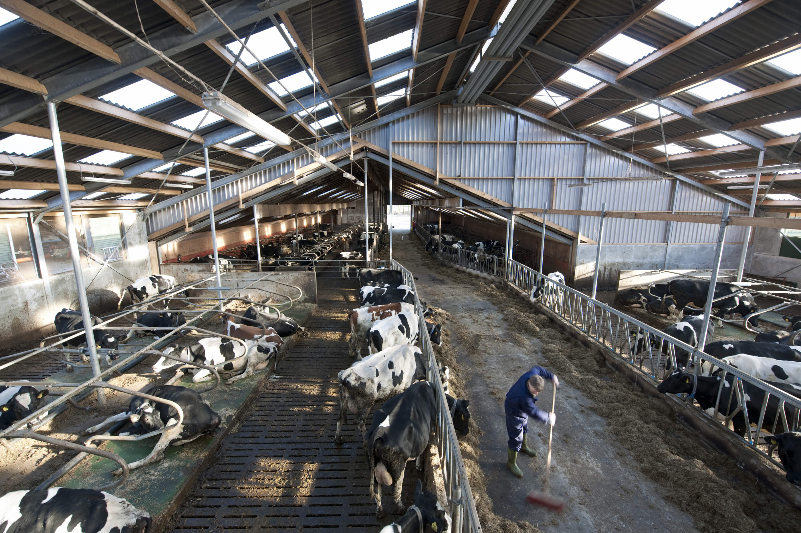 Welded steel structural frame supporting a barn