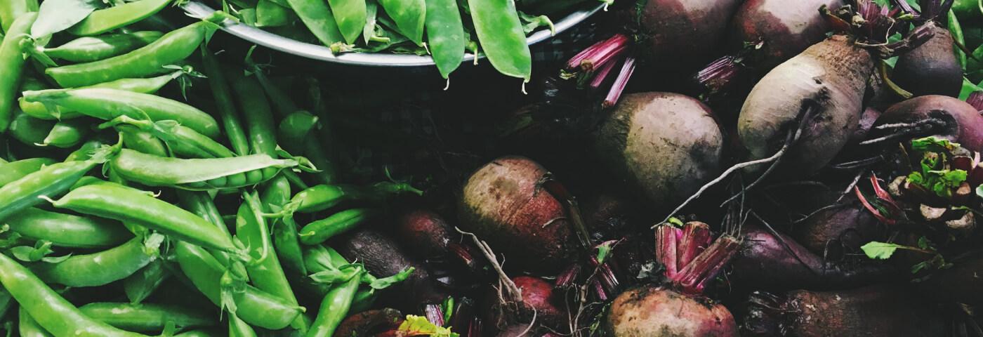 Farm and Produce