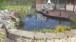 Beautifully created personal pond for homeowner.