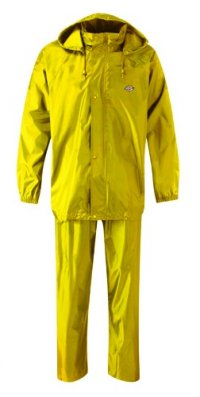 Dickies yellow wp