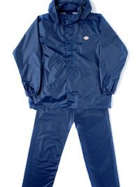 Dickies blue wp