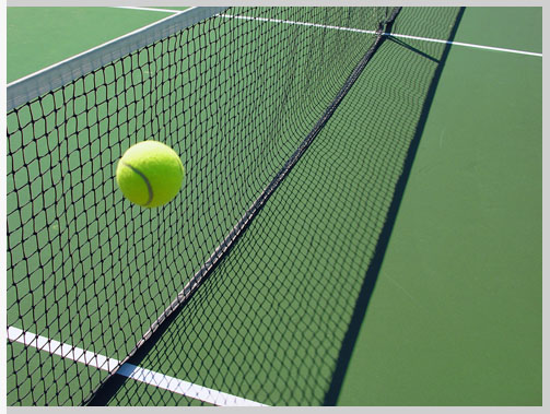 Court Repair & Maintenance