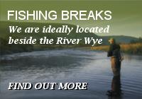 fishing breaks button